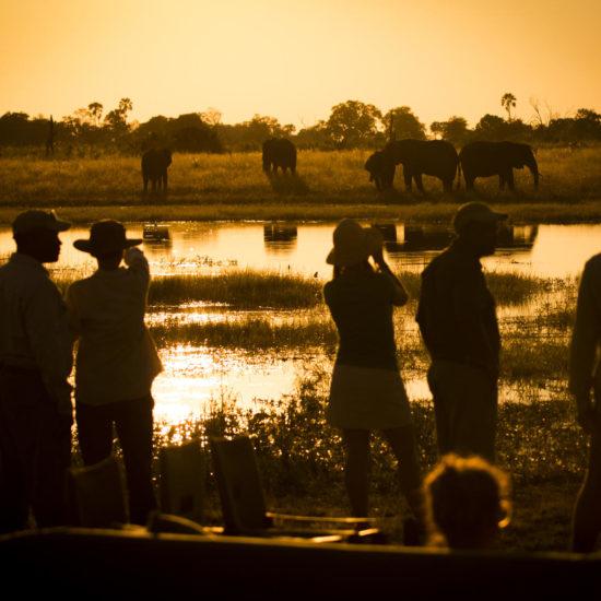 Abu Camp sundowners