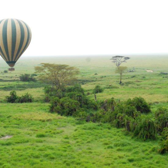Balloon in the Serengeti