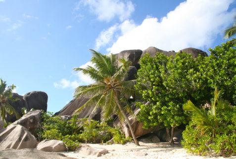 La Digue in Seychelles