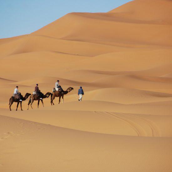 Camel RIders in Desert