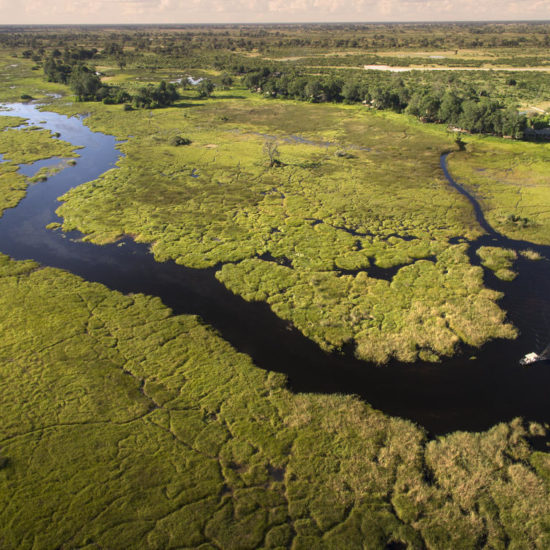 Aerial view Okavango Delta