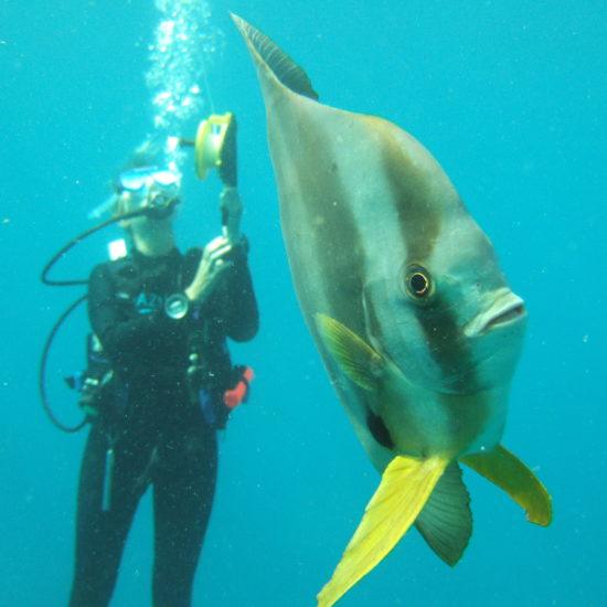 Diving-person-fish-Azura-Benguerra