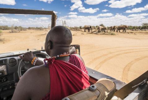 Game drive in Amboseli