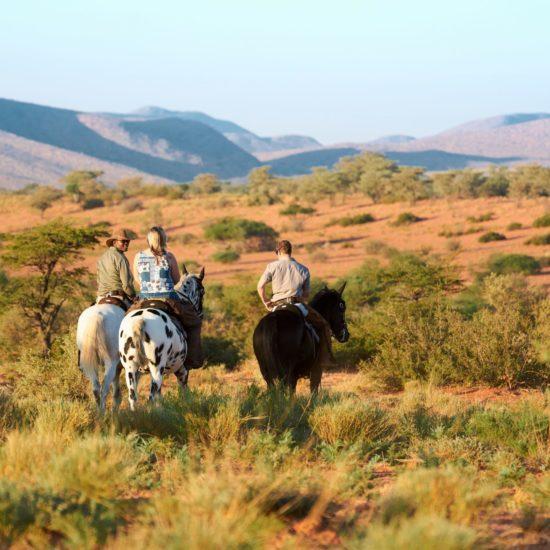Horse riding Tswalu