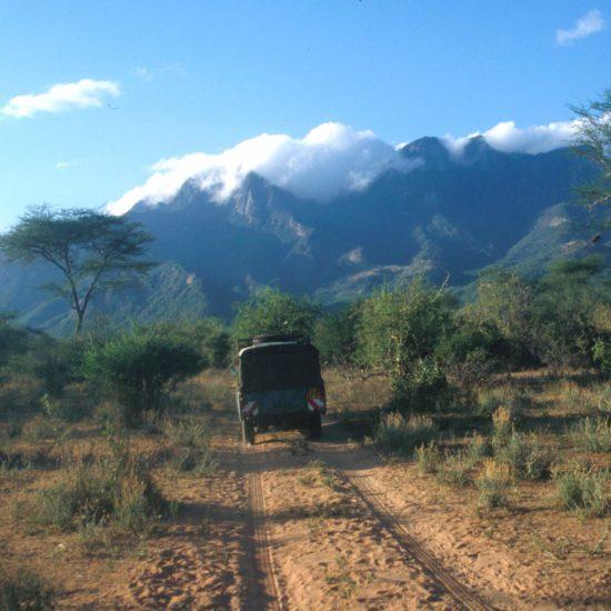 Safari vehicle driving away