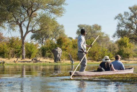 Mekoro in Botswana