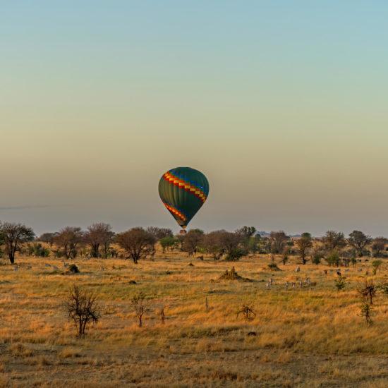 Balloon in Serengeti