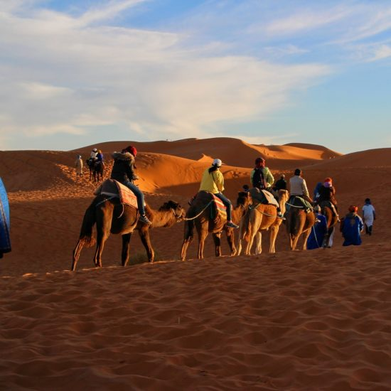 Clients on Camels